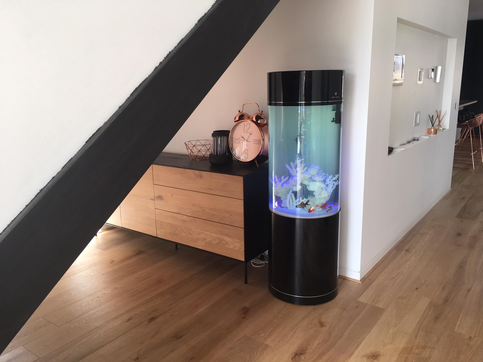 Fish Tanks For Sale - Home Display