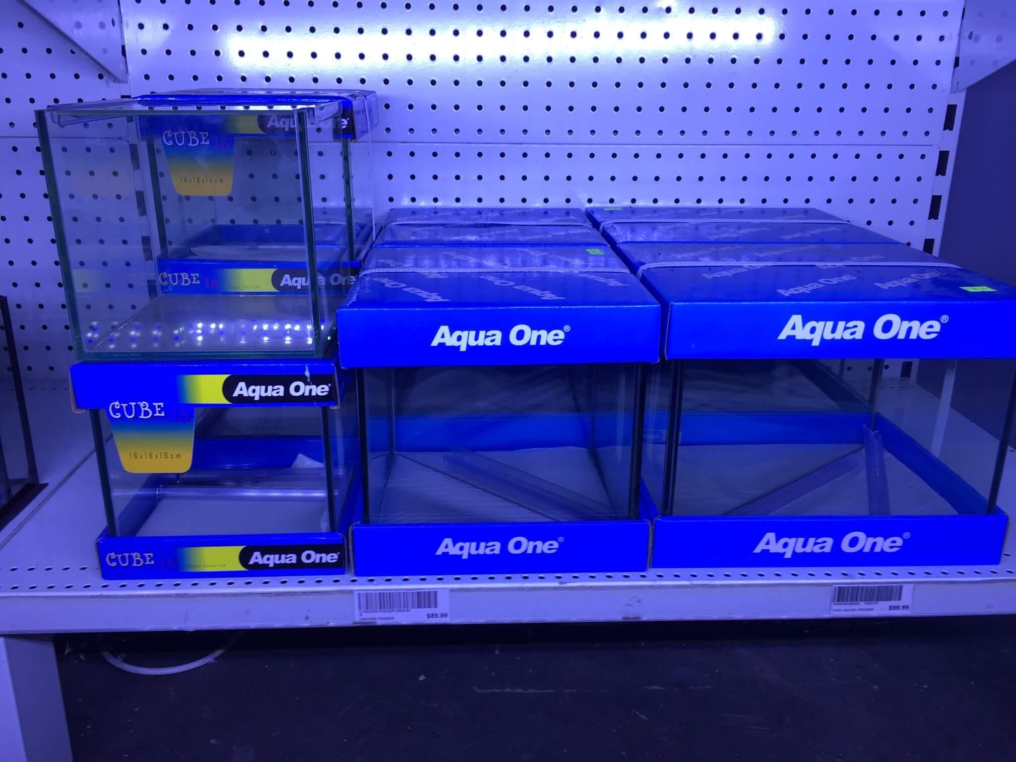 Betta Fish Tank Melbourne | Aqua One Tanks