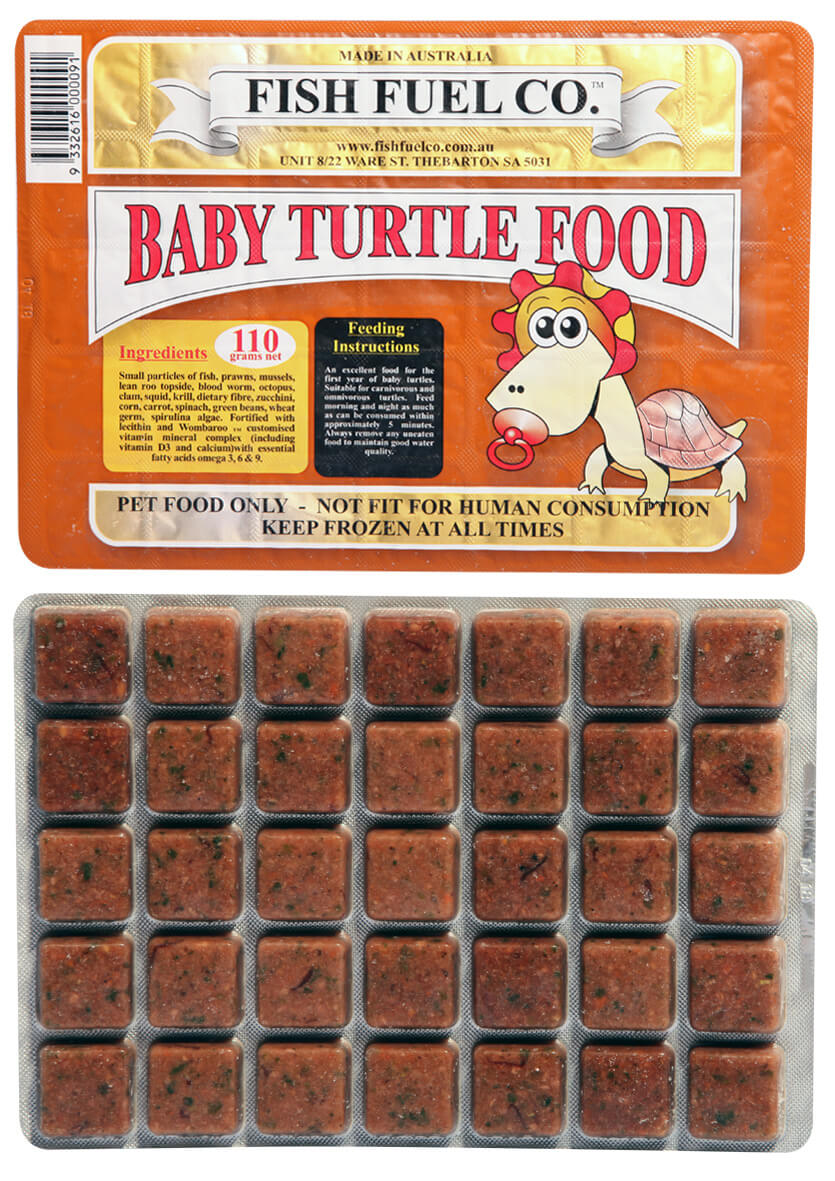 Birthday Gift Turtle - Baby Turtle Frozen Food