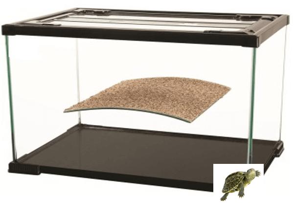 Baby Turtles Aquariums